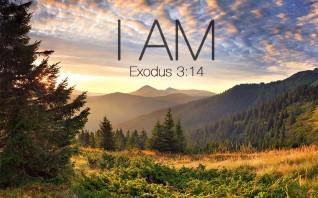 8  Ways Jesus Reveals His Identity to Us