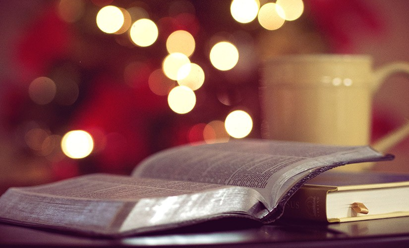 Our Top Bible Gift Picks for Christmas 2020 | Blog | American